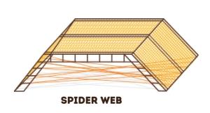 6_SpiderWeb